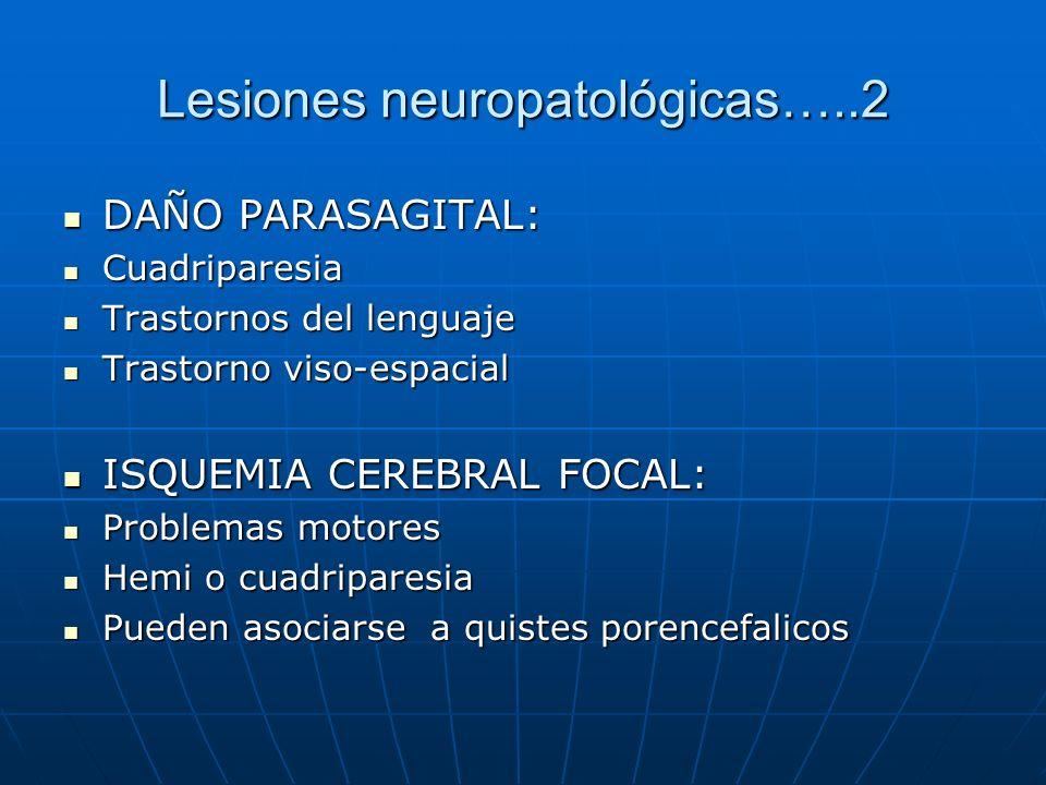Lesiones neuropatológicas…..2 DAÑO PARASAGITAL: DAÑO PARASAGITAL: Cuadriparesia Cuadriparesia Trastornos del lenguaje Trastornos del lenguaje Trastorn