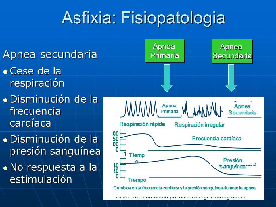 Asfixia: Fisiopatologia Apnea secundaria l Cese de la respiración l Disminución de la frecuencia cardíaca l Disminución de la presión sanguínea l No r