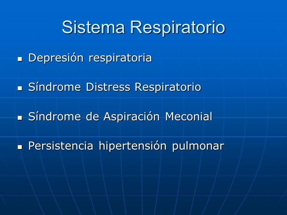 Sistema Respiratorio Depresión respiratoria Depresión respiratoria Síndrome Distress Respiratorio Síndrome Distress Respiratorio Síndrome de Aspiració