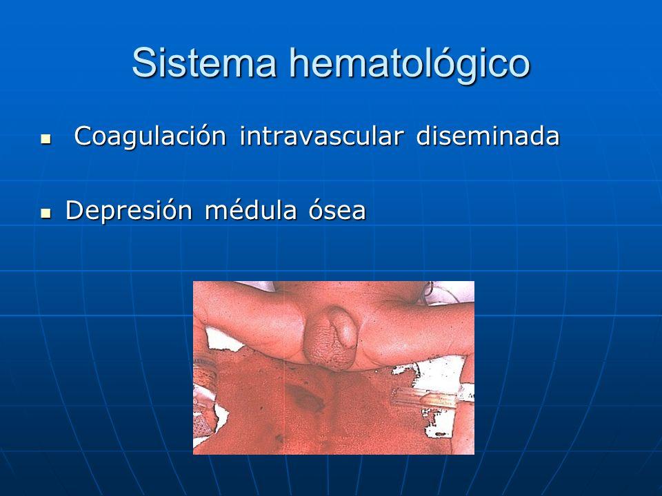 Sistema hematológico Coagulación intravascular diseminada Coagulación intravascular diseminada Depresión médula ósea Depresión médula ósea