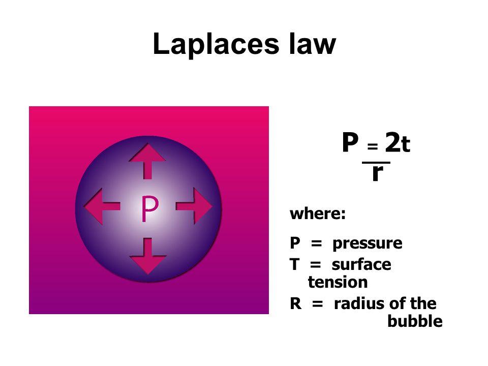 Surface tension Air liquid SURFACE Polar H 2 O molecules attract