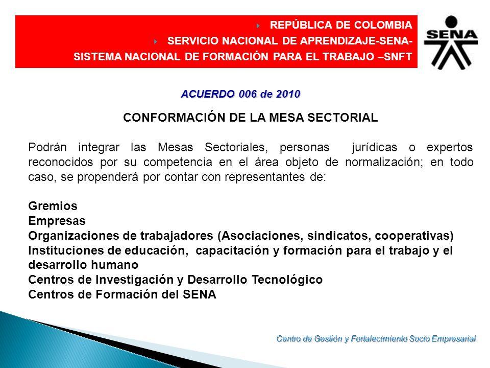 DIRECCIÓN GENERAL CONFORMACIÓN DE LA MESA SECTORIAL Podrán integrar las Mesas Sectoriales, personas jurídicas o expertos reconocidos por su competenci