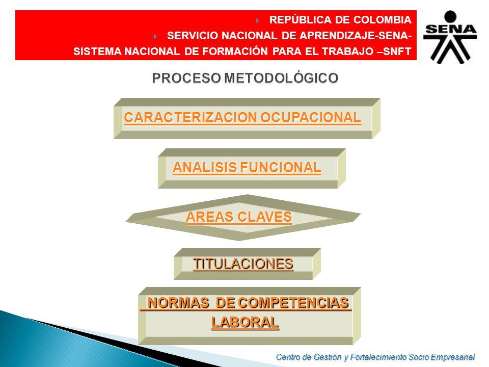 DIRECCIÓN GENERAL REPÚBLICA DE COLOMBIA SERVICIO NACIONAL DE APRENDIZAJE-SENA- SISTEMA NACIONAL DE FORMACIÓN PARA EL TRABAJO –SNFT El Objeto de análisis: La función productiva Generalmente se usa a nivel operativo y se circunscribe a aspectos técnicos La función puede estar relacionada con una ocupación, una empresa, un grupo de empresas o todo un sector de la producción o los servicios.