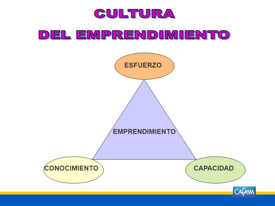 COMPETENCIAS BÁSICAS COMPETENCIAS CIUDADANAS COMPETENCIAS LABORALES GENERALES CULTURA DEL EMPRENDIMIENTO COMPETENCIAS EMPRESARIALES