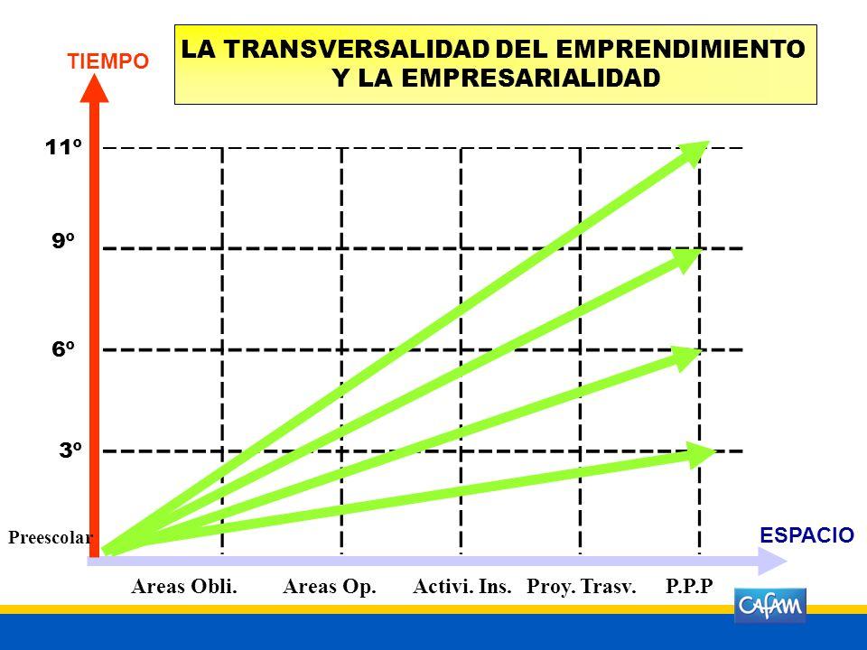 La acción formativa desarrollada en la totalidad de los programas de una institución educativa en los niveles de educación preescolar, básica primaria