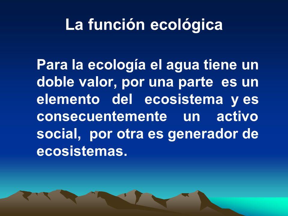 La función ecológica Para la ecología el agua tiene un doble valor, por una parte es un elemento del ecosistema y es consecuentemente un activo social