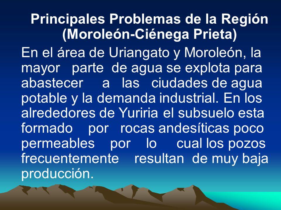 Principales Problemas de la Región (Moroleón-Ciénega Prieta) En el área de Uriangato y Moroleón, la mayor parte de agua se explota para abastecer a la
