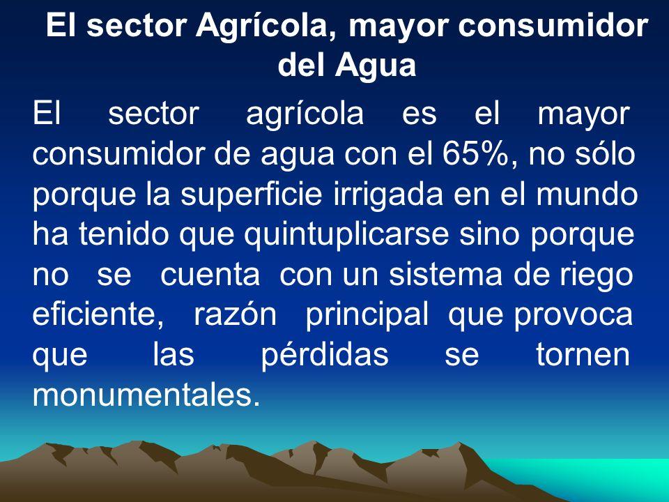 El sector Agrícola, mayor consumidor del Agua El sector agrícola es el mayor consumidor de agua con el 65%, no sólo porque la superficie irrigada en e