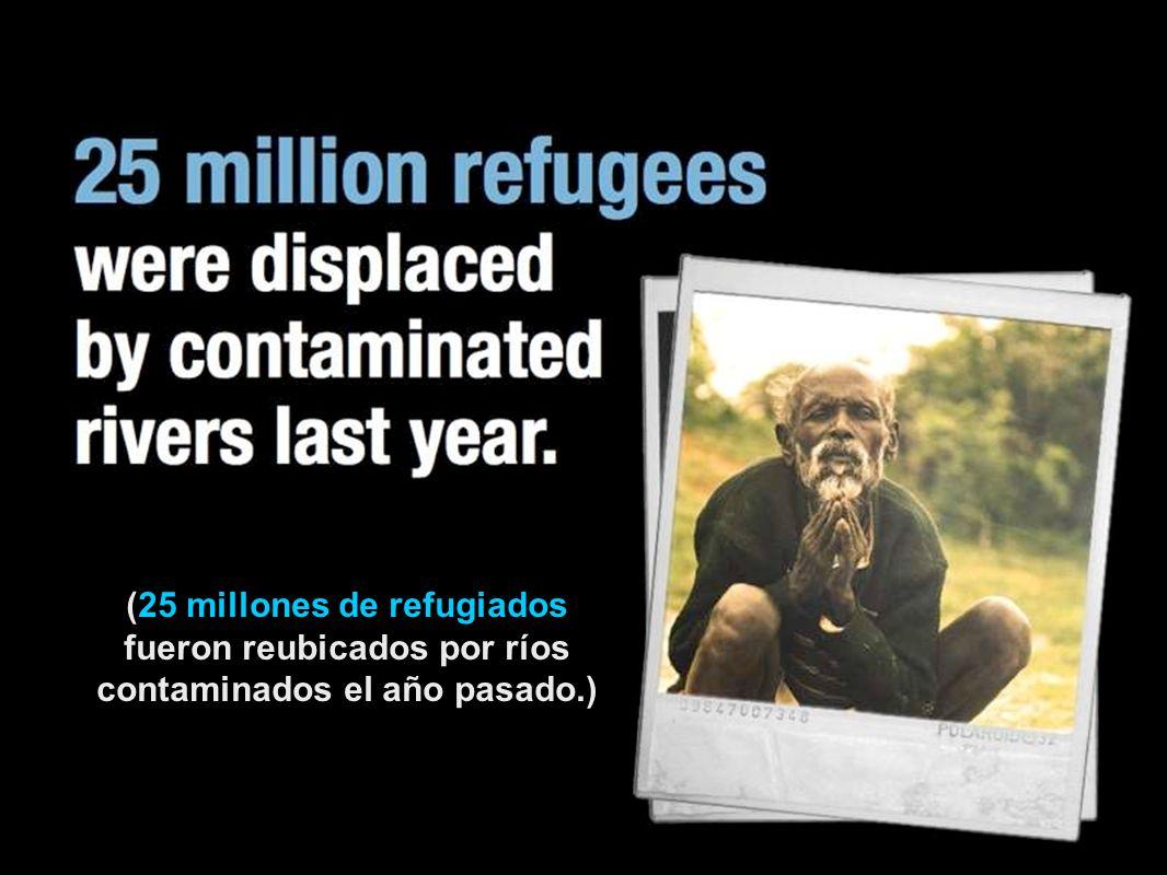 (25 millones de refugiados fueron reubicados por ríos contaminados el año pasado.)