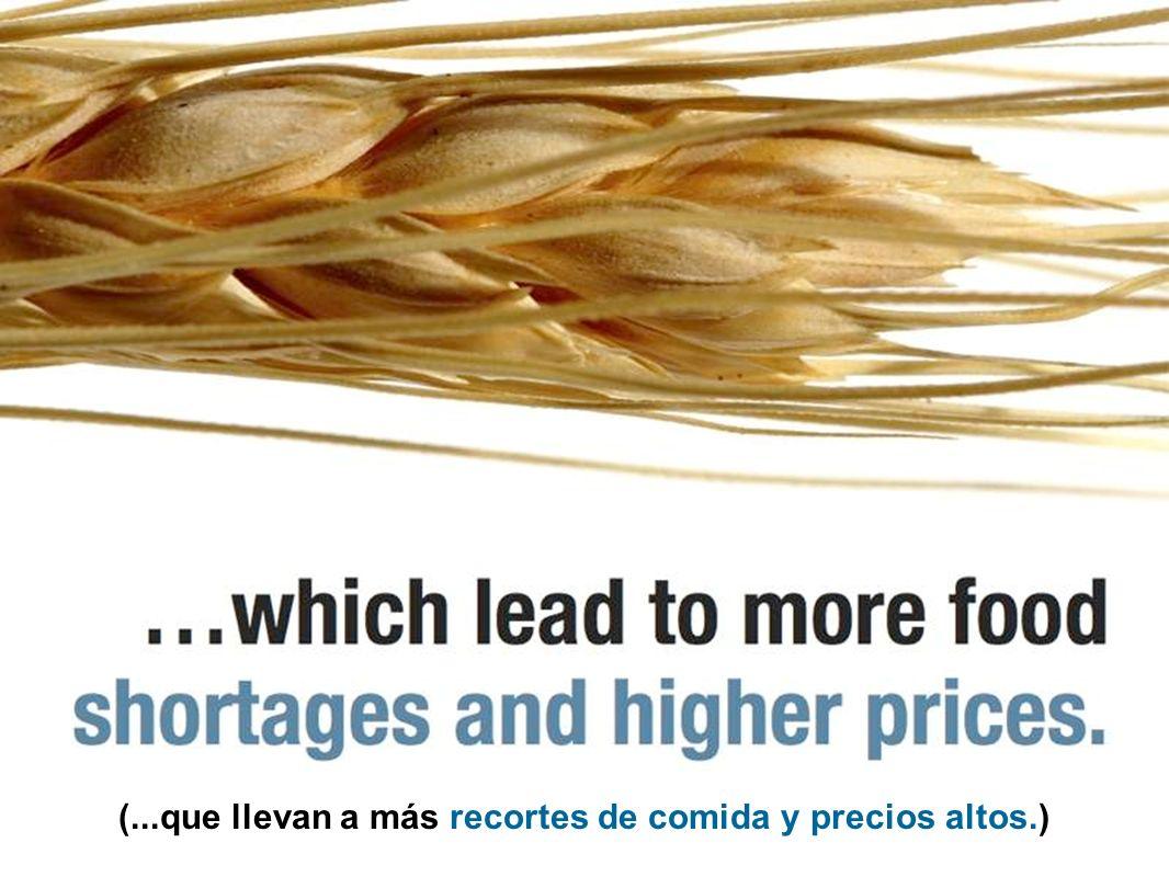 (...que llevan a más recortes de comida y precios altos.)