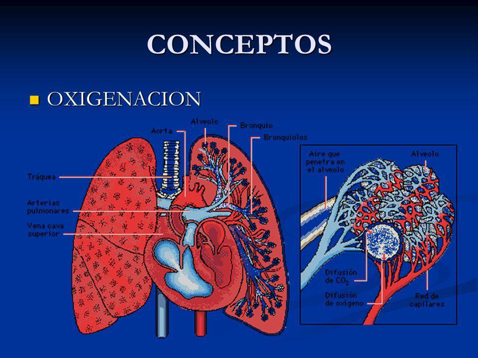 OXIGENACION CANTIDAD DE OXIGENO EN UN MEDIO CANTIDAD DE OXIGENO EN UN MEDIO SATURACION SATURACION GRADO DE CAPACIDAD DE TRANSPORTE DE OXIGENO DE LA HEMOGLOBINA GRADO DE CAPACIDAD DE TRANSPORTE DE OXIGENO DE LA HEMOGLOBINA