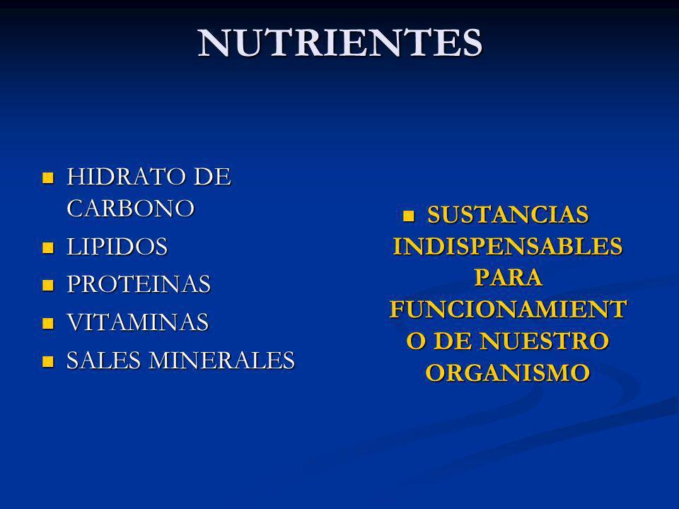 NUTRIENTES HIDRATO DE CARBONO HIDRATO DE CARBONO LIPIDOS LIPIDOS PROTEINAS PROTEINAS VITAMINAS VITAMINAS SALES MINERALES SALES MINERALES SUSTANCIAS IN
