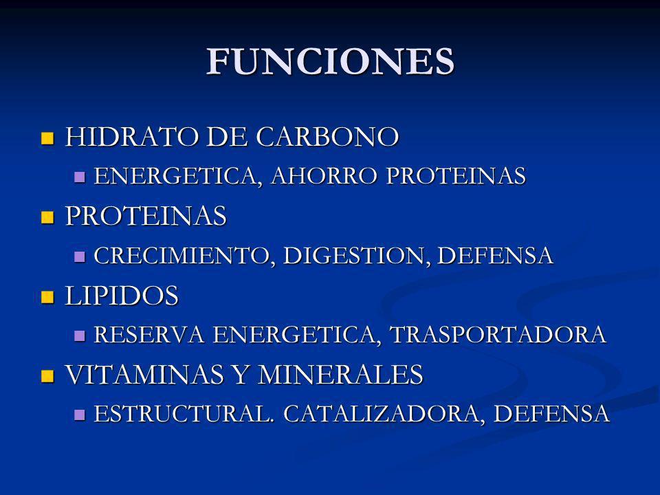 FUNCIONES HIDRATO DE CARBONO HIDRATO DE CARBONO ENERGETICA, AHORRO PROTEINAS ENERGETICA, AHORRO PROTEINAS PROTEINAS PROTEINAS CRECIMIENTO, DIGESTION,