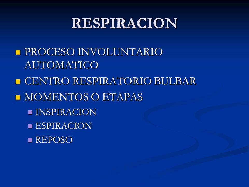 RESPIRACION PROCESO INVOLUNTARIO AUTOMATICO PROCESO INVOLUNTARIO AUTOMATICO CENTRO RESPIRATORIO BULBAR CENTRO RESPIRATORIO BULBAR MOMENTOS O ETAPAS MO