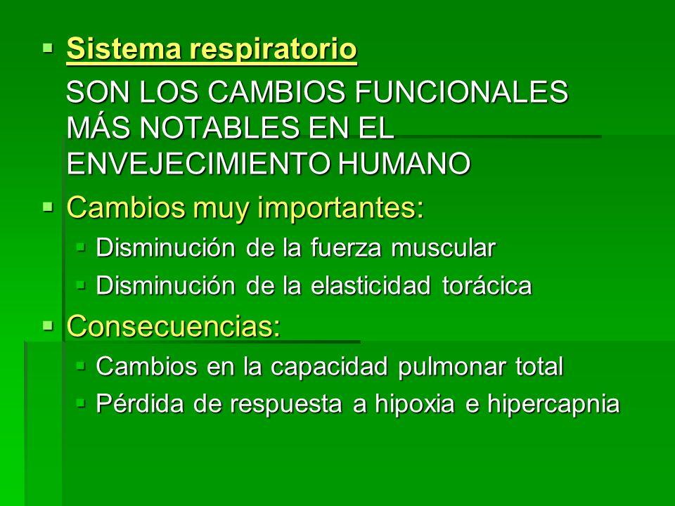 Sistema respiratorio Sistema respiratorio SON LOS CAMBIOS FUNCIONALES MÁS NOTABLES EN EL ENVEJECIMIENTO HUMANO SON LOS CAMBIOS FUNCIONALES MÁS NOTABLE