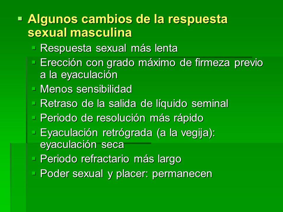 Algunos cambios de la respuesta sexual masculina Algunos cambios de la respuesta sexual masculina Respuesta sexual más lenta Respuesta sexual más lent