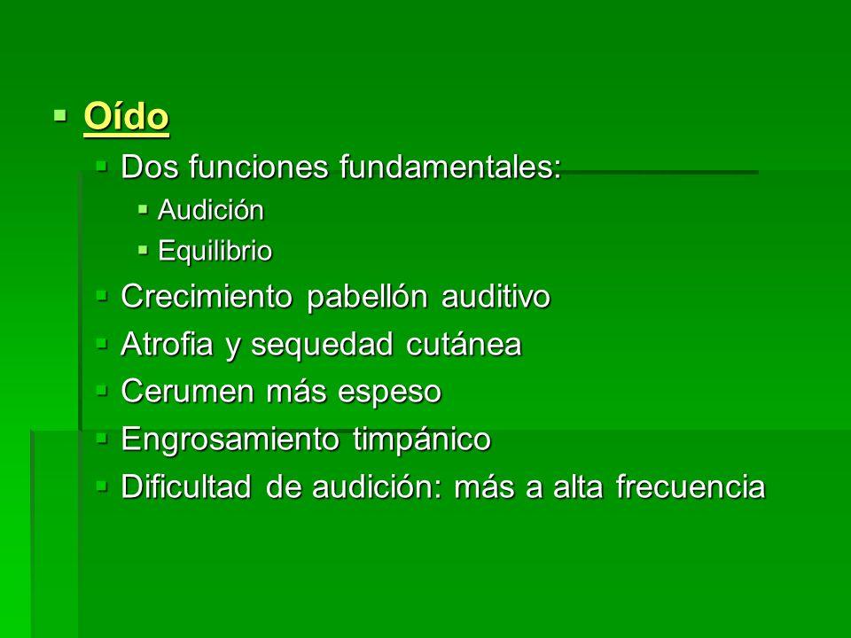 Oído Oído Dos funciones fundamentales: Dos funciones fundamentales: Audición Audición Equilibrio Equilibrio Crecimiento pabellón auditivo Crecimiento