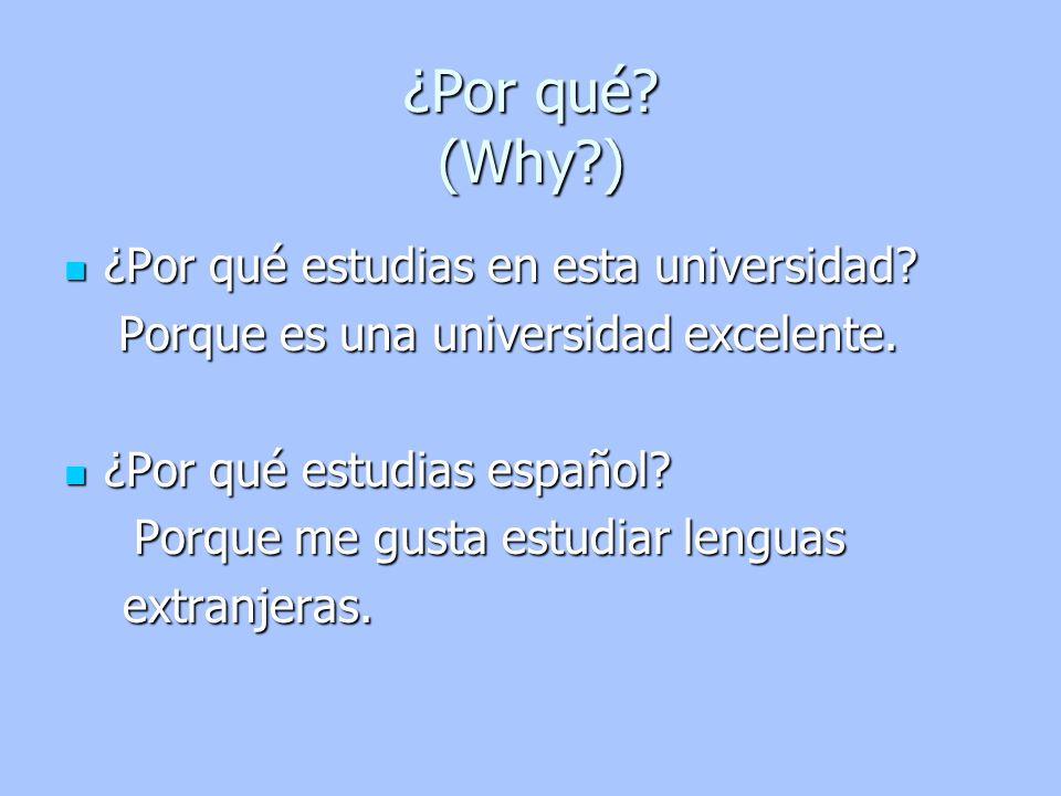 ¿Por qué estudias en esta universidad? ¿Por qué estudias en esta universidad? Porque es una universidad excelente. Porque es una universidad excelente