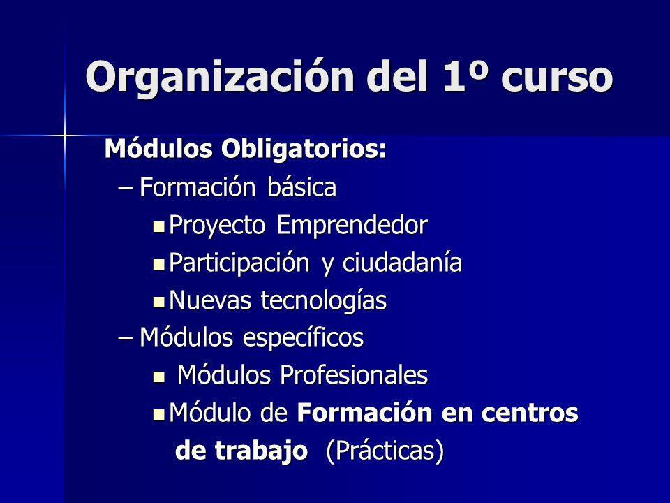 Organización del 1º curso Módulos Obligatorios: Módulos Obligatorios: –Formación básica Proyecto Emprendedor Proyecto Emprendedor Participación y ciud