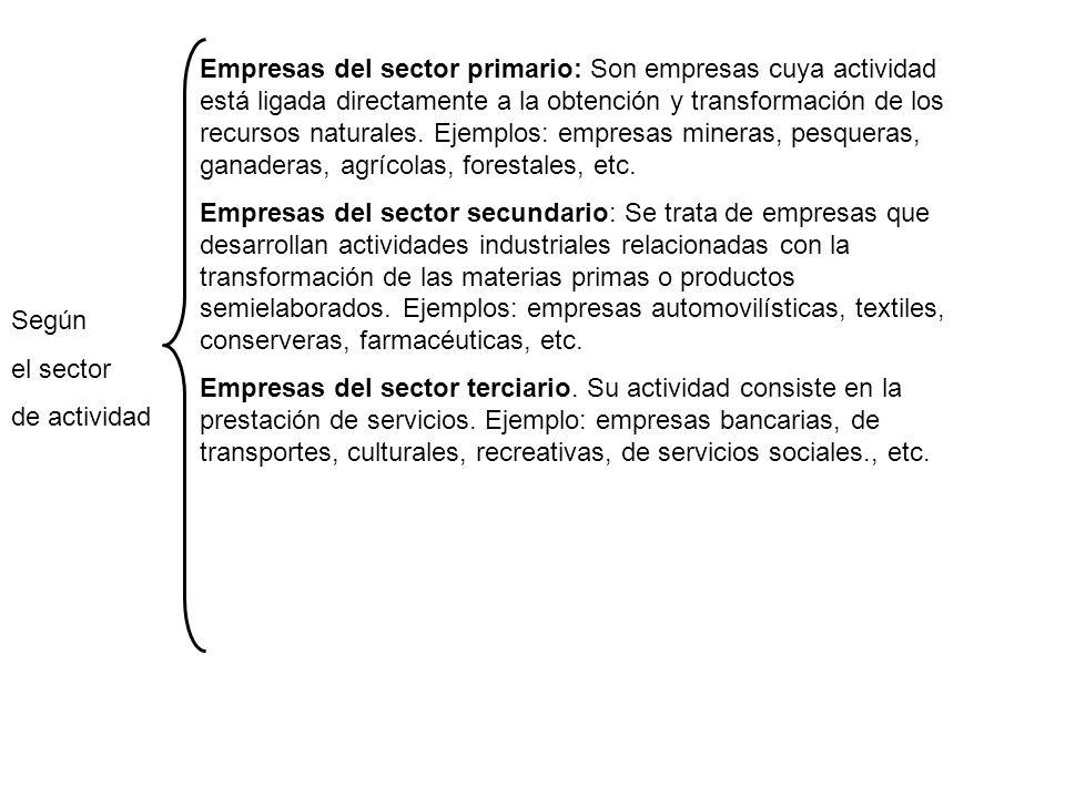 Según el sector de actividad Empresas del sector primario: Son empresas cuya actividad está ligada directamente a la obtención y transformación de los