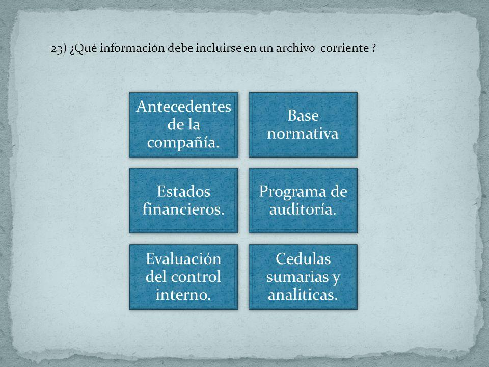 23) ¿Qué información debe incluirse en un archivo corriente ? Antecedentes de la compañía. Base normativa Estados financieros. Programa de auditoría.