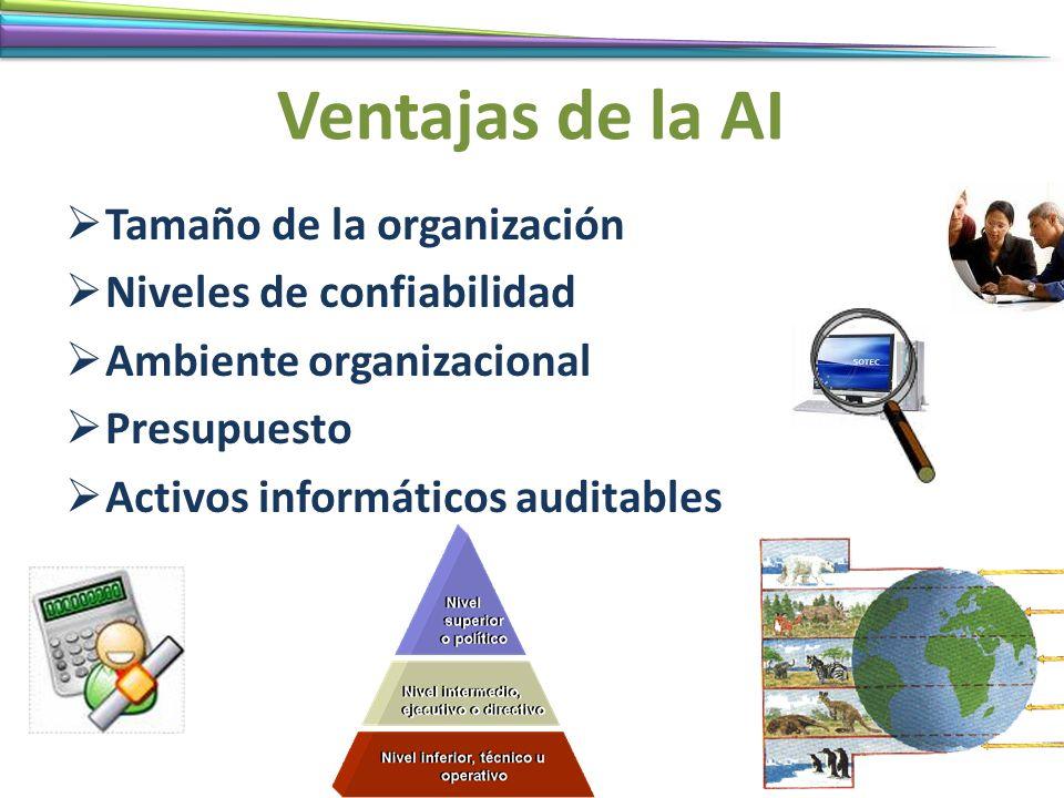 Ventajas de la AI Tamaño de la organización Niveles de confiabilidad Ambiente organizacional Presupuesto Activos informáticos auditables
