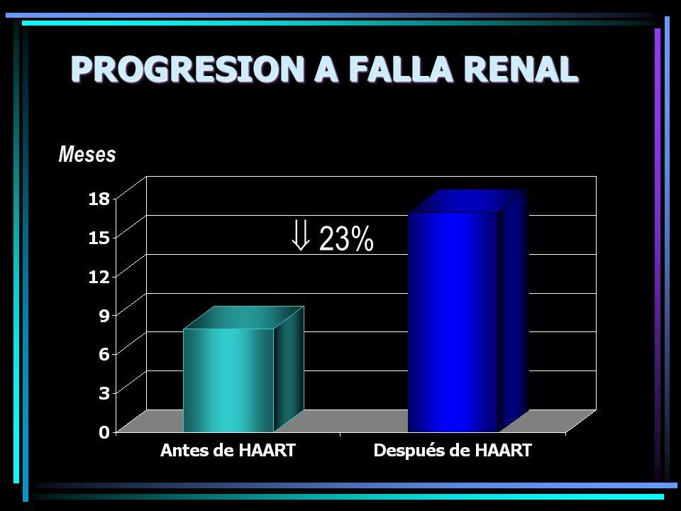 PROGRESION A FALLA RENAL Meses 23%