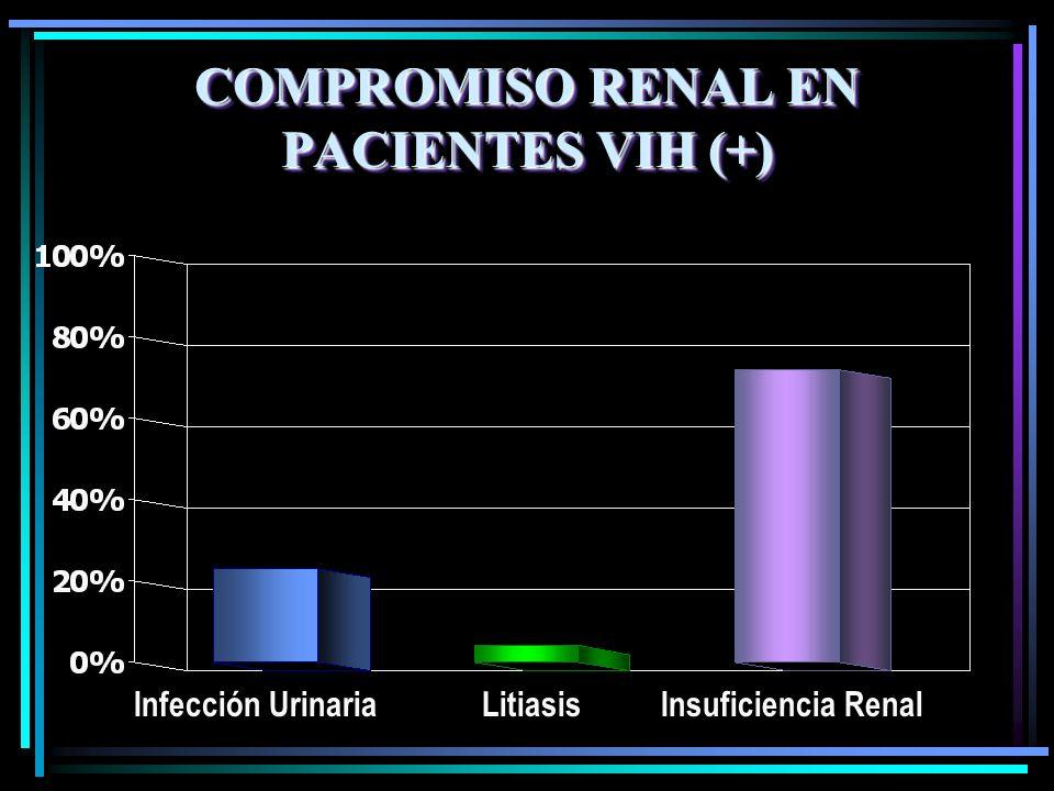 COMPROMISO RENAL EN PACIENTES VIH (+) Infección Urinaria LitiasisInsuficiencia Renal