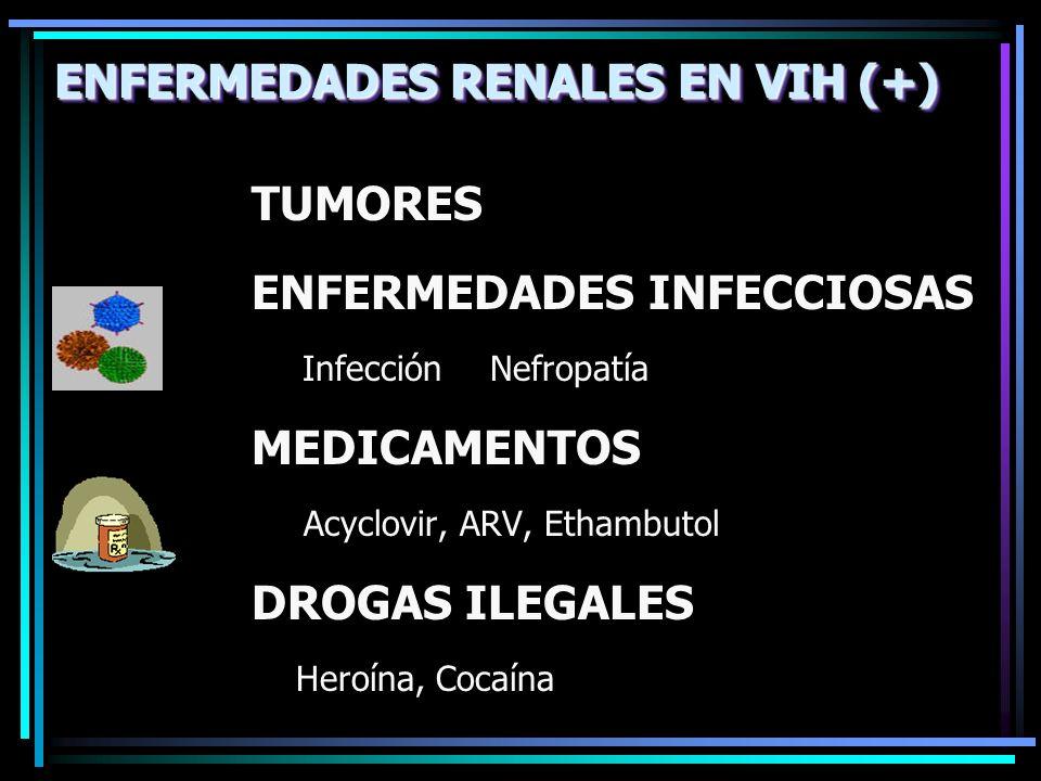 TUMORES ENFERMEDADES INFECCIOSAS Infección Nefropatía MEDICAMENTOS Acyclovir, ARV, Ethambutol DROGAS ILEGALES Heroína, Cocaína ENFERMEDADES RENALES EN