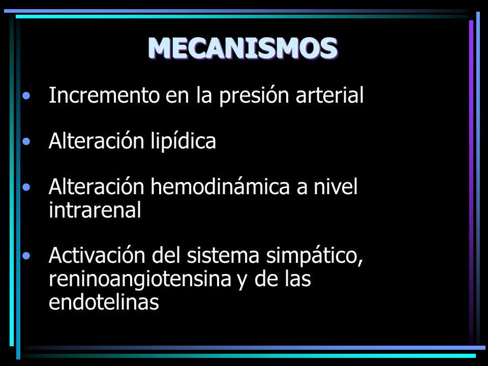 MECANISMOSMECANISMOS Incremento en la presión arterial Alteración lipídica Alteración hemodinámica a nivel intrarenal Activación del sistema simpático