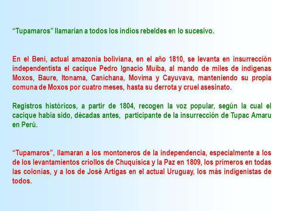 Tupamaros llamarían a todos los indios rebeldes en lo sucesivo. En el Beni, actual amazonía boliviana, en el año 1810, se levanta en insurrección inde