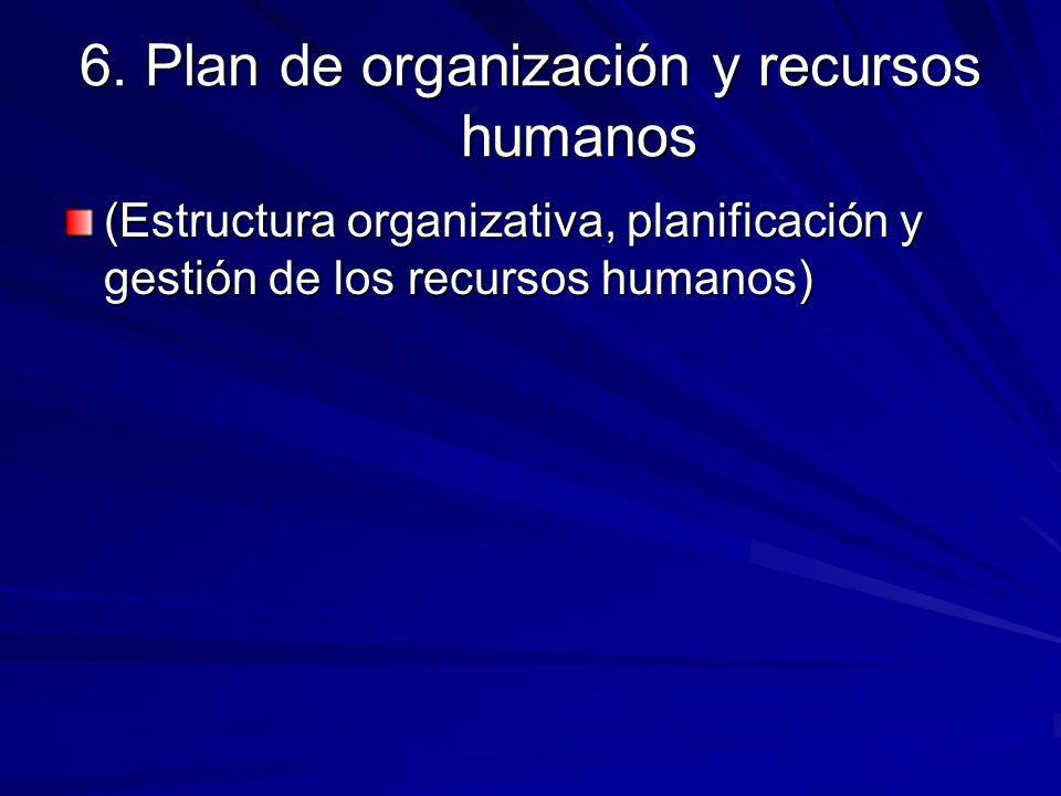6. Plan de organización y recursos humanos (Estructura organizativa, planificación y gestión de los recursos humanos)