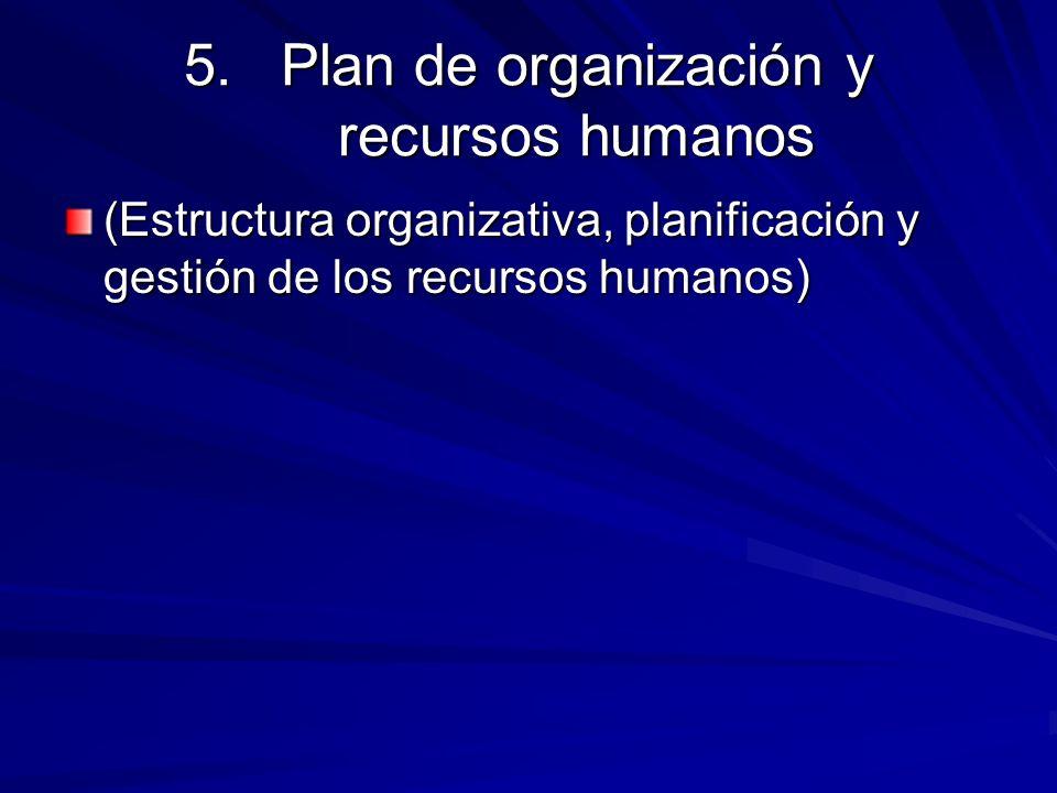 5.Plan de organización y recursos humanos (Estructura organizativa, planificación y gestión de los recursos humanos)