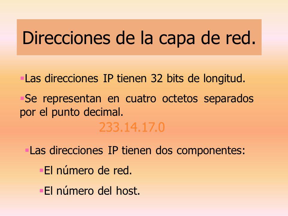 Direcciones de la capa de red. 233.14.17.0 Las direcciones IP tienen 32 bits de longitud. Se representan en cuatro octetos separados por el punto deci