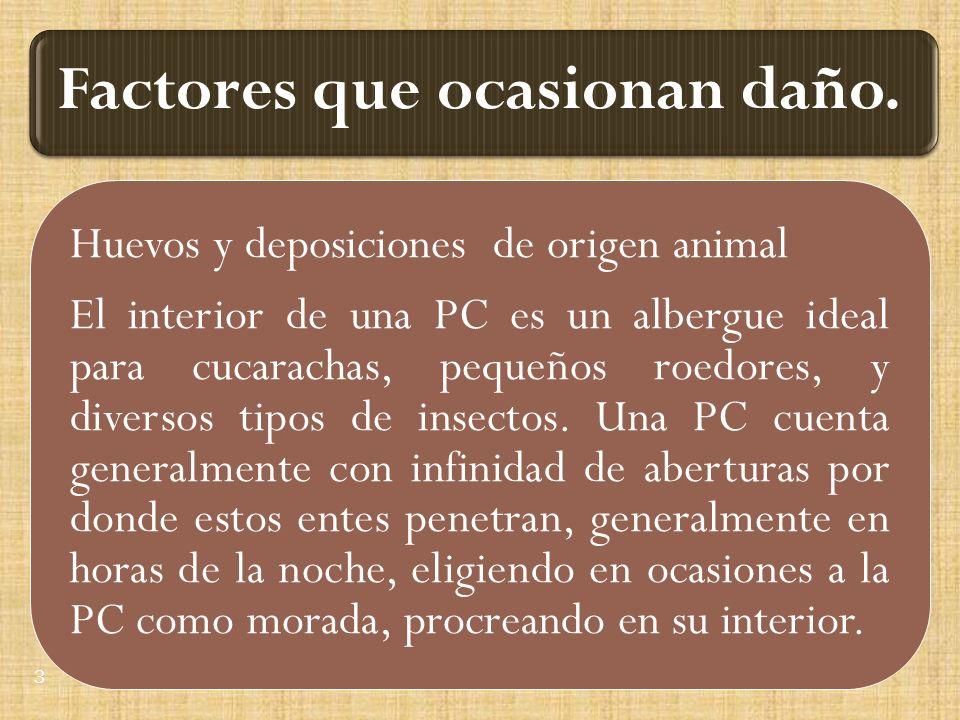 Huevos y deposiciones de origen animal El interior de una PC es un albergue ideal para cucarachas, pequeños roedores, y diversos tipos de insectos.