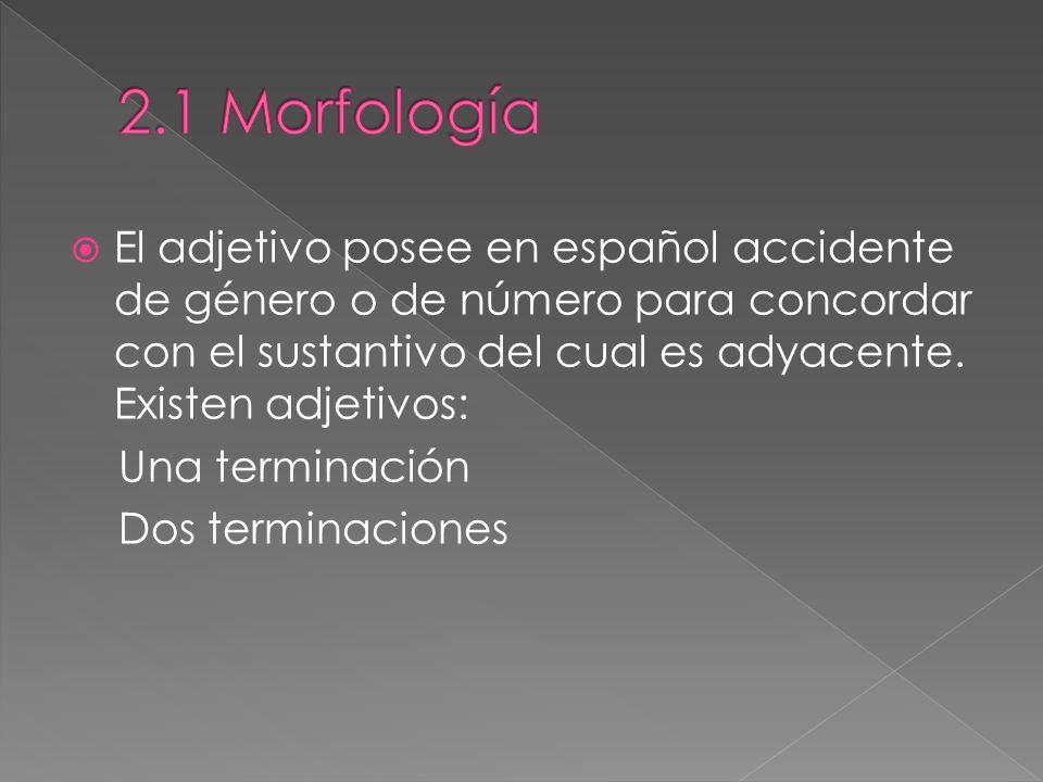 El adjetivo posee en español accidente de género o de número para concordar con el sustantivo del cual es adyacente.