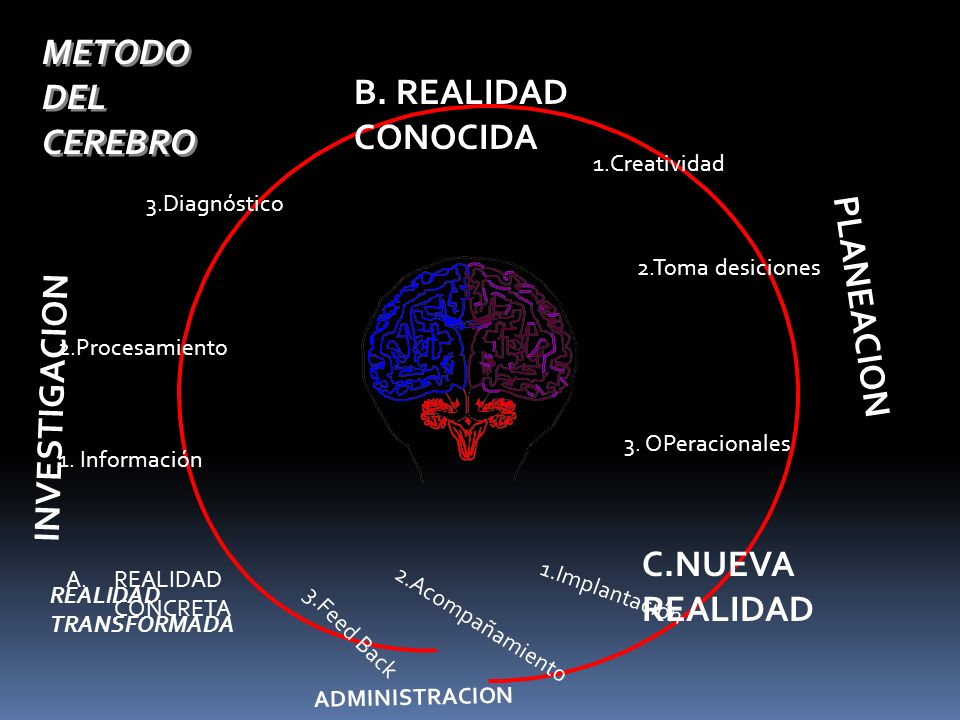 A.REALIDAD CONCRETA 1. Información 2.Procesamiento 3.Diagnóstico B. REALIDAD CONOCIDA C.NUEVA REALIDAD 1.Creatividad 2.Toma desiciones 3. OPeracionale