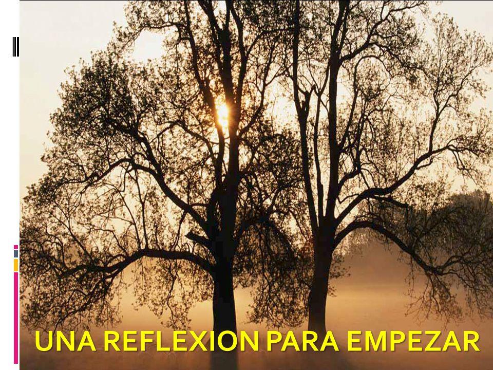 UNA REFLEXION PARA EMPEZAR