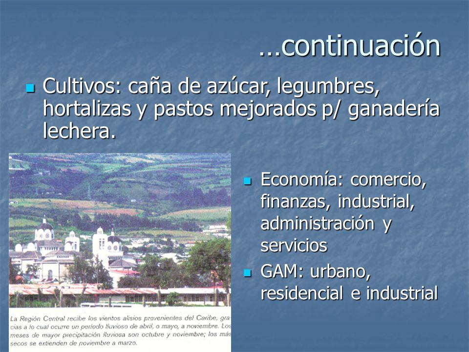 Región Central Núcleos urbanos: San José, Alajuela, Cartago y Heredia Núcleos urbanos: San José, Alajuela, Cartago y Heredia Superficie: 15% Superfici