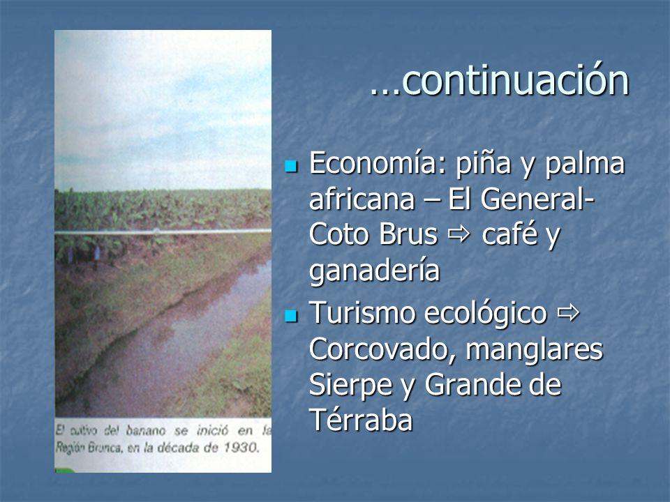 Región Brunca Cordillera Costeña, Valle El General-Coto Brus, valle del Diquís y Coto Colorado y península de Osa Cordillera Costeña, Valle El General