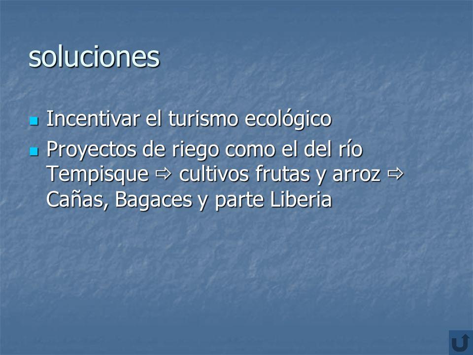 problemática Deforestación Deforestación Turismo: problemas sociales drogadicción, prostitución, contaminación de ríos y playas. Turismo: problemas so