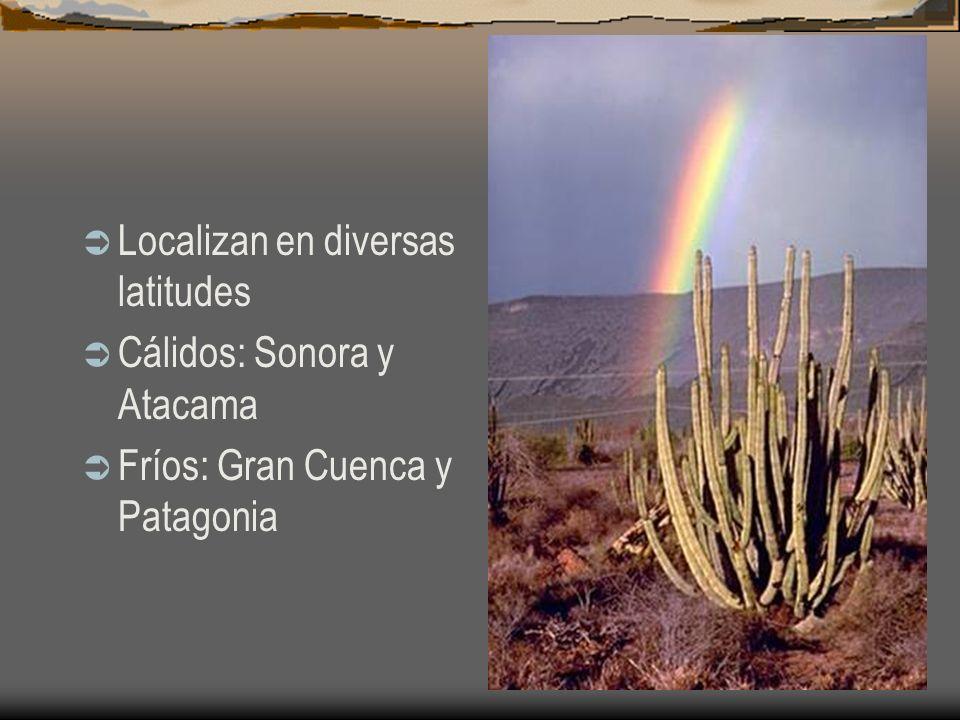 Localizan en diversas latitudes Cálidos: Sonora y Atacama Fríos: Gran Cuenca y Patagonia