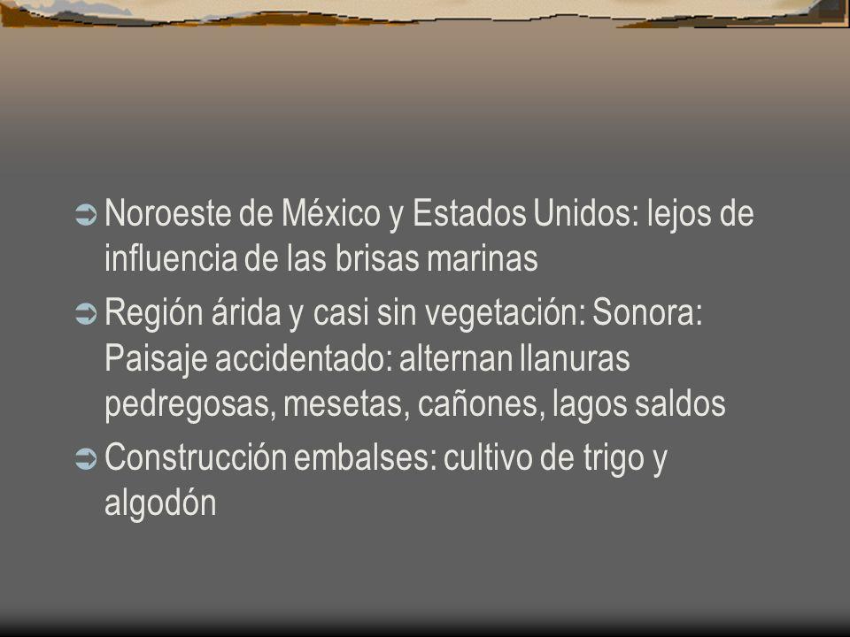 Noroeste de México y Estados Unidos: lejos de influencia de las brisas marinas Región árida y casi sin vegetación: Sonora: Paisaje accidentado: altern