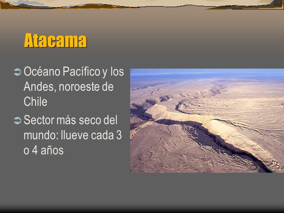 Atacama Océano Pacífico y los Andes, noroeste de Chile Sector más seco del mundo: llueve cada 3 o 4 años