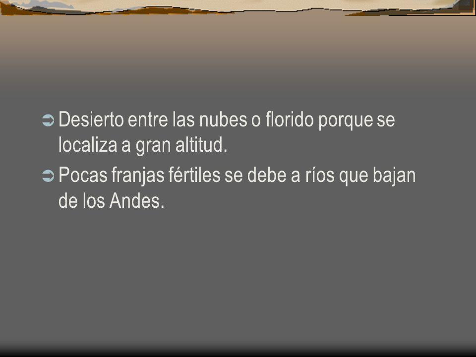Desierto entre las nubes o florido porque se localiza a gran altitud. Pocas franjas fértiles se debe a ríos que bajan de los Andes.