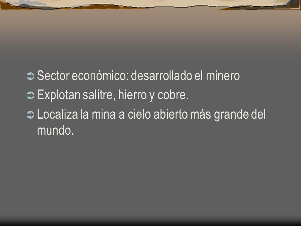 Sector económico: desarrollado el minero Explotan salitre, hierro y cobre. Localiza la mina a cielo abierto más grande del mundo.