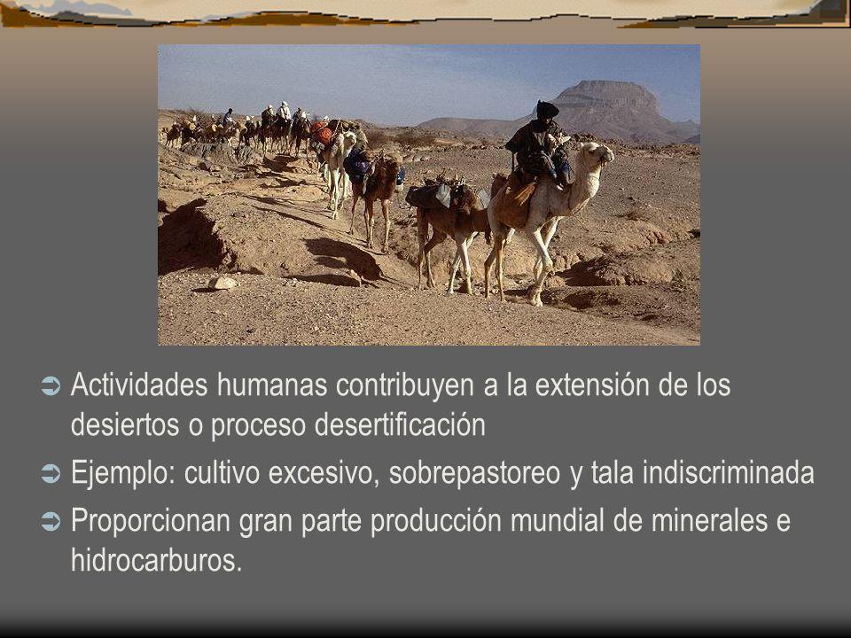 Actividades humanas contribuyen a la extensión de los desiertos o proceso desertificación Ejemplo: cultivo excesivo, sobrepastoreo y tala indiscrimina