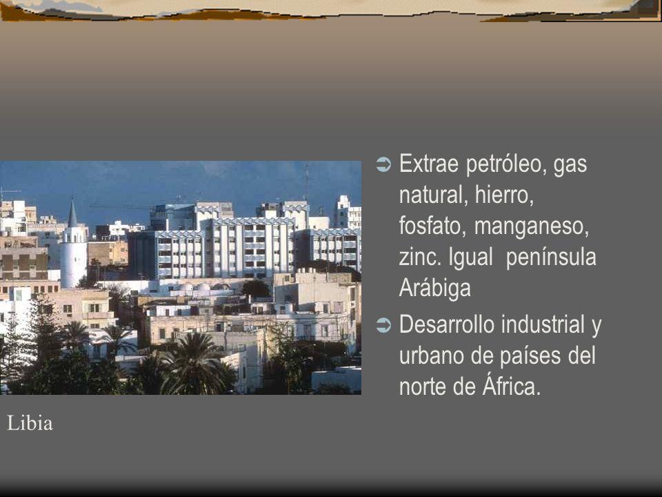 Extrae petróleo, gas natural, hierro, fosfato, manganeso, zinc. Igual península Arábiga Desarrollo industrial y urbano de países del norte de África.