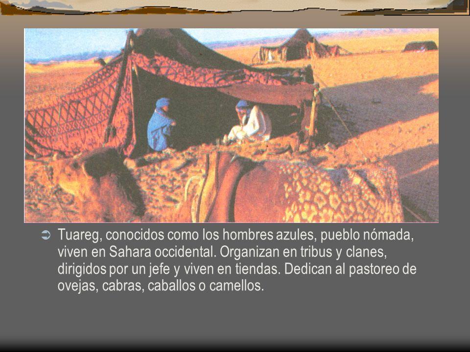 Tuareg, conocidos como los hombres azules, pueblo nómada, viven en Sahara occidental. Organizan en tribus y clanes, dirigidos por un jefe y viven en t