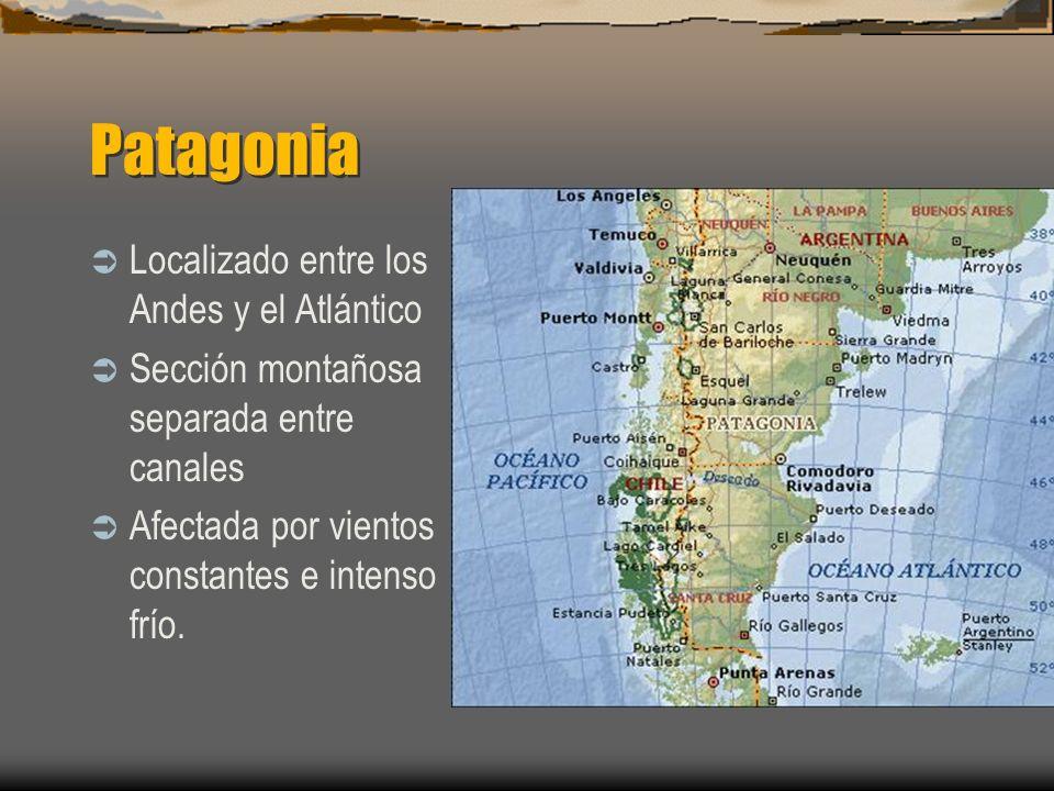 Patagonia Localizado entre los Andes y el Atlántico Sección montañosa separada entre canales Afectada por vientos constantes e intenso frío.
